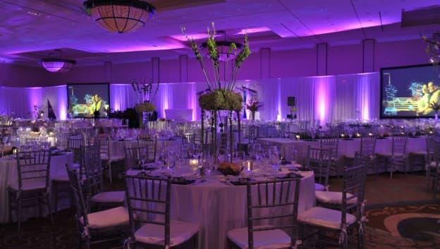 Wedding venues in orlando florida orlando weddings near walt wedding venue interior junglespirit Image collections