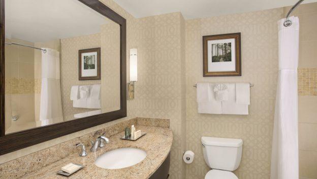 Standard Deluxe Guest Room Bathroom